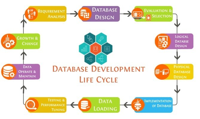 database_development State Tech